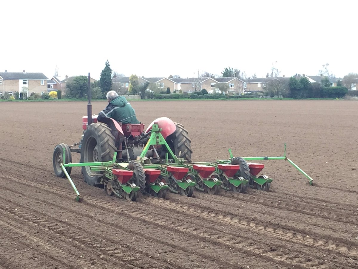test Twitter Media - Grandfather drilling the sugar beet today 28ac done half way 👍🏻 @MF_EAME #massey #135 #sugarbeet @AGCOcorp https://t.co/wkWwpimDHH
