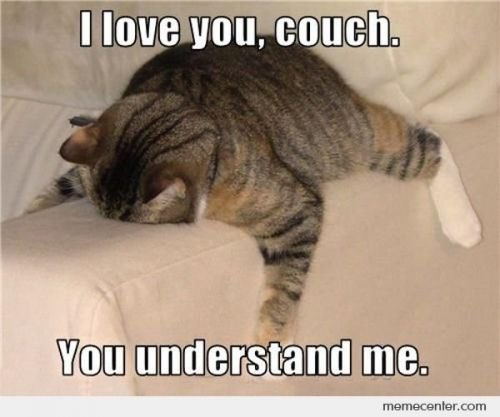 Image result for exhausted on couch