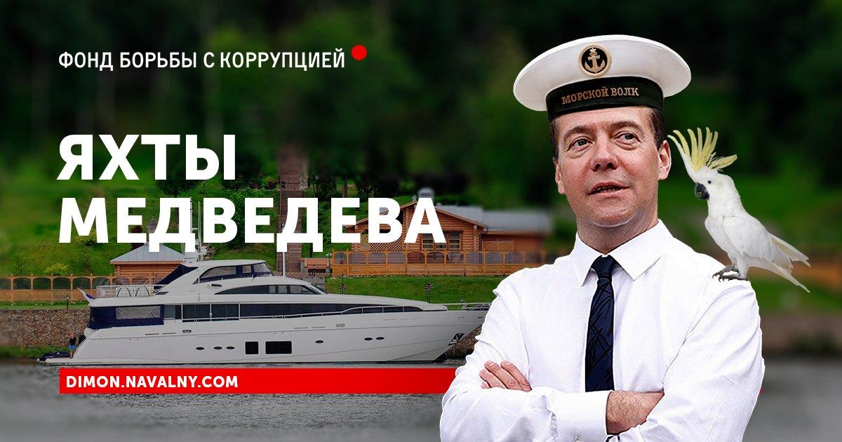 Кто такая Настя Рыбка и при чем здесь Медведев