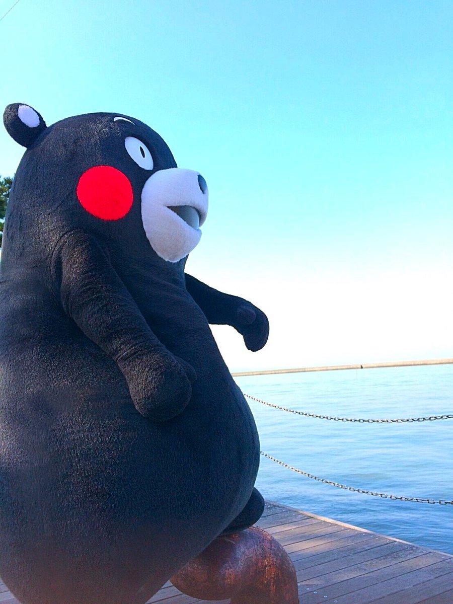 おはくま〜☆今日は金曜日、あとひとがんばりかモン!