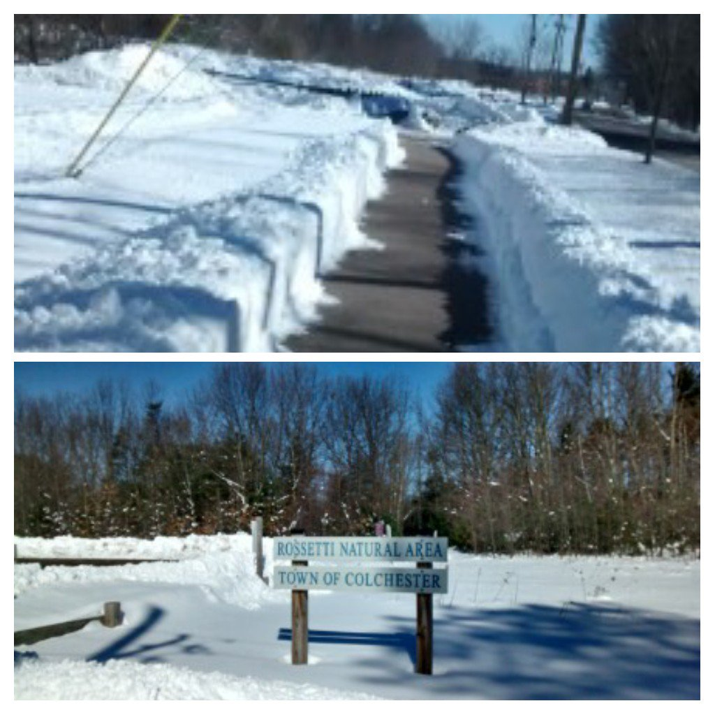 Colchester Bike Path is in good shape!  #Vermont <br>http://pic.twitter.com/scPdTeIW0W