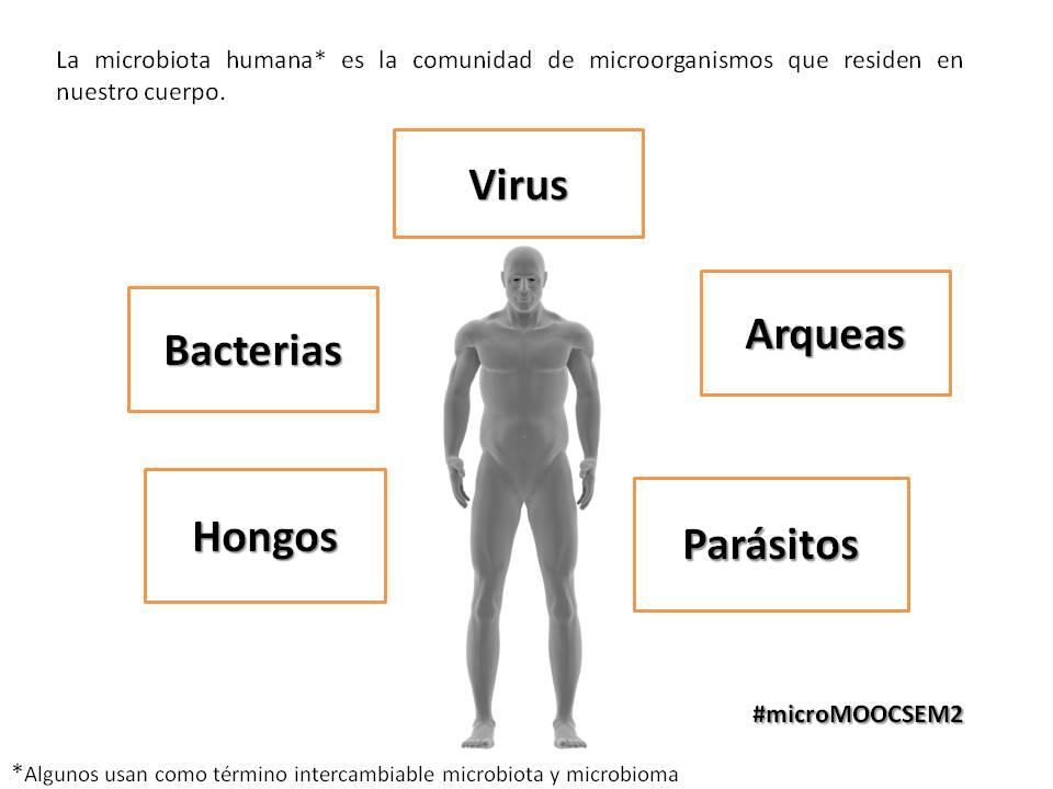 La microbiota humana es la comunidad de microorganismos que residen en nuestro cuerpo  #microMOOCSEM2 https://t.co/4VtoigvB0I