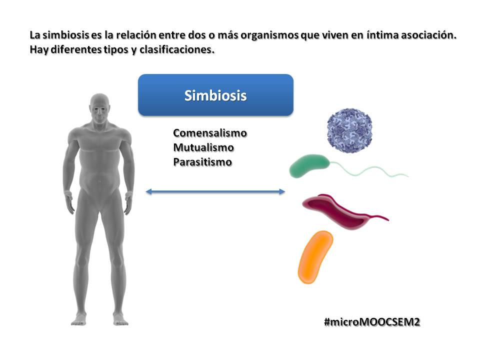 Muchos de nuestros microorganismos viven en relación simbiótica con nosotros #microMOOCSEM2 https://t.co/G5jXsNT903