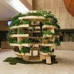 "Thinking green this #saintpatricksday? @IKEA's ""Growroom"" allows individuals to start their own urban gardens! https://t.co/WfuN9W3K5G"