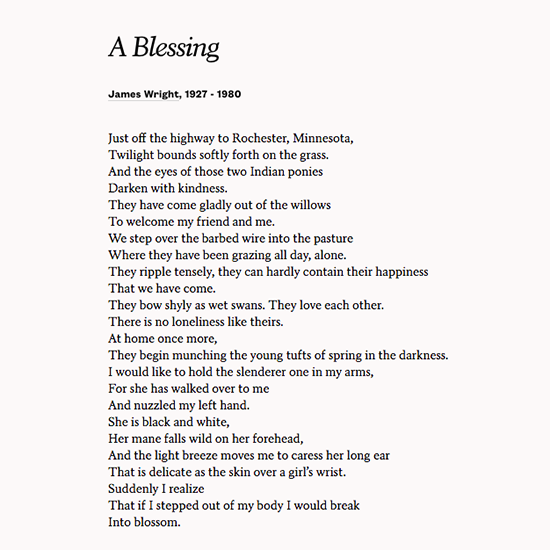 james wrights a blessing essay I was looking for james wright, a blessing and i was take by we convince by our presence i am convinced that you are a beautiful writer with conviction and sensitivity, and i thank you for the way you explored this poem.