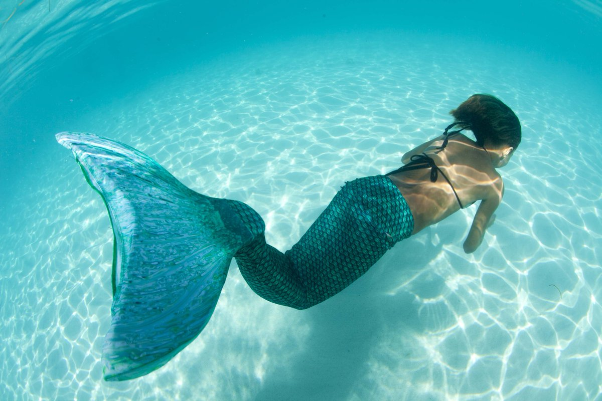 Fin Fun Mermaid Tails on Twitter:
