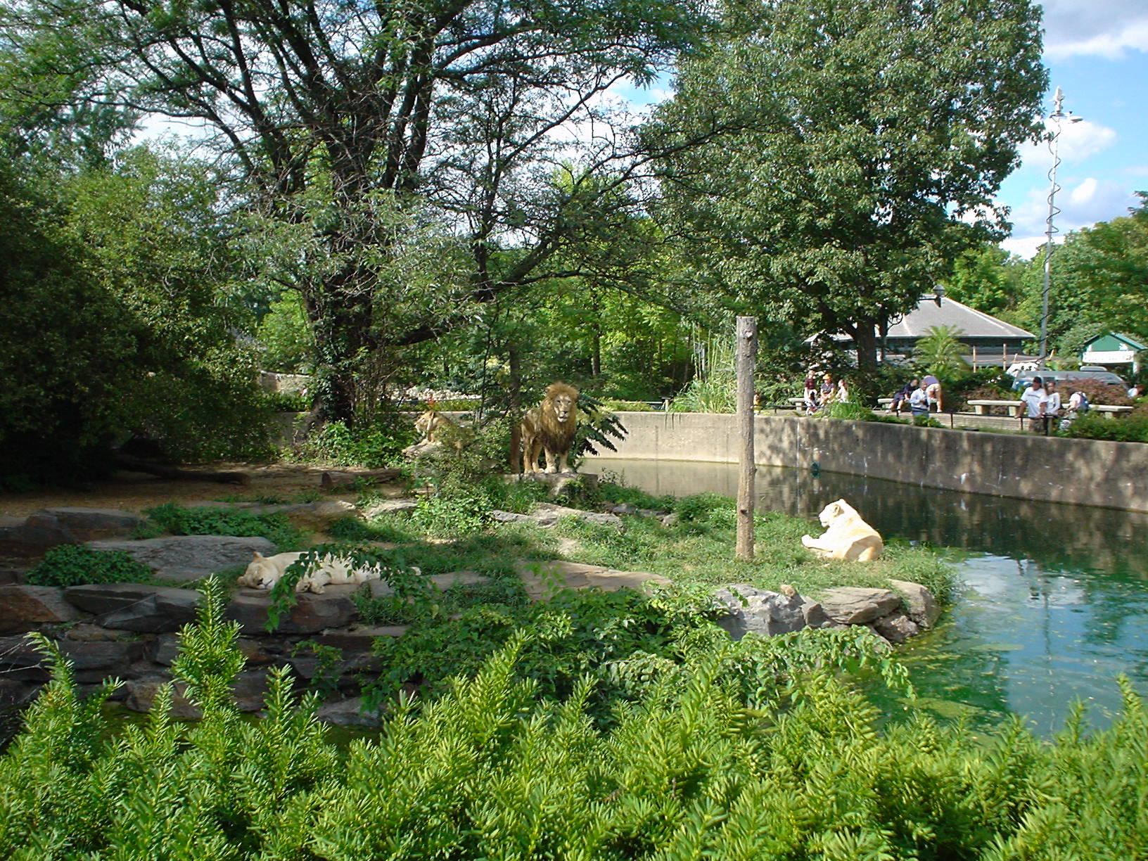 #philly #Philadelphia #pa #Pennsylvania #aug2004 #phillyzoo #zoo https://t.co/Jte5SUU6P1