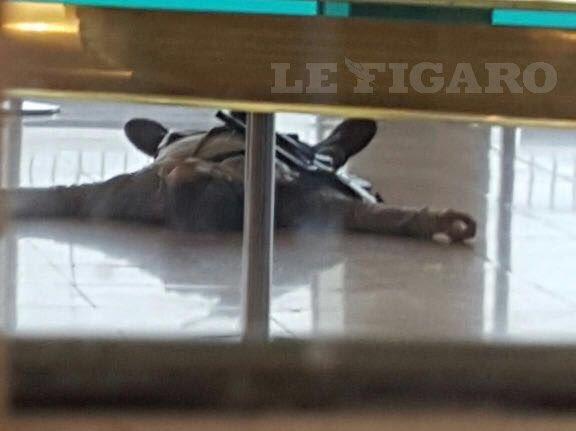Très bien ...! Une merde de moins sur cette terre ..! #Orly #terroriste <br>http://pic.twitter.com/IBggrv77Pj