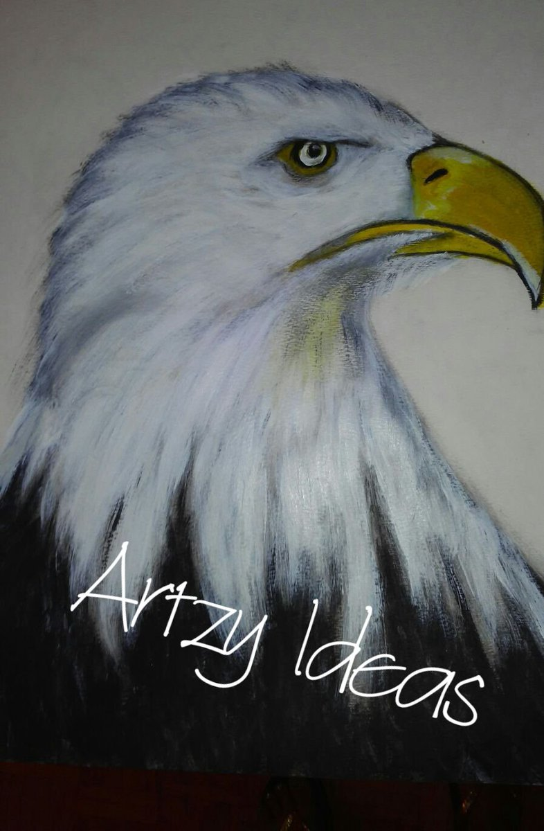 #Baldeagle #artistavailable #art #painting #drawing #sketch #birdpic.twitter.com/sNZRrVpUsS