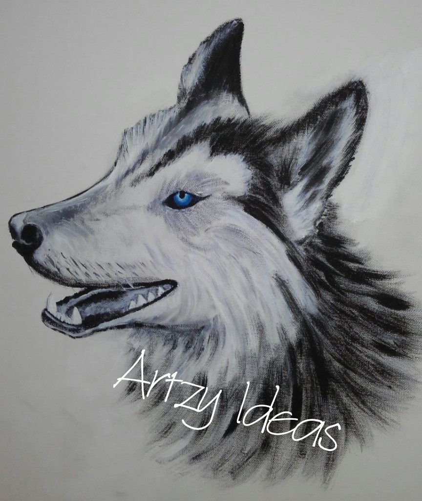 #husky #painting #art #artistavailable #drawing #sketch #artloverspic.twitter.com/8fCB6b9nUA