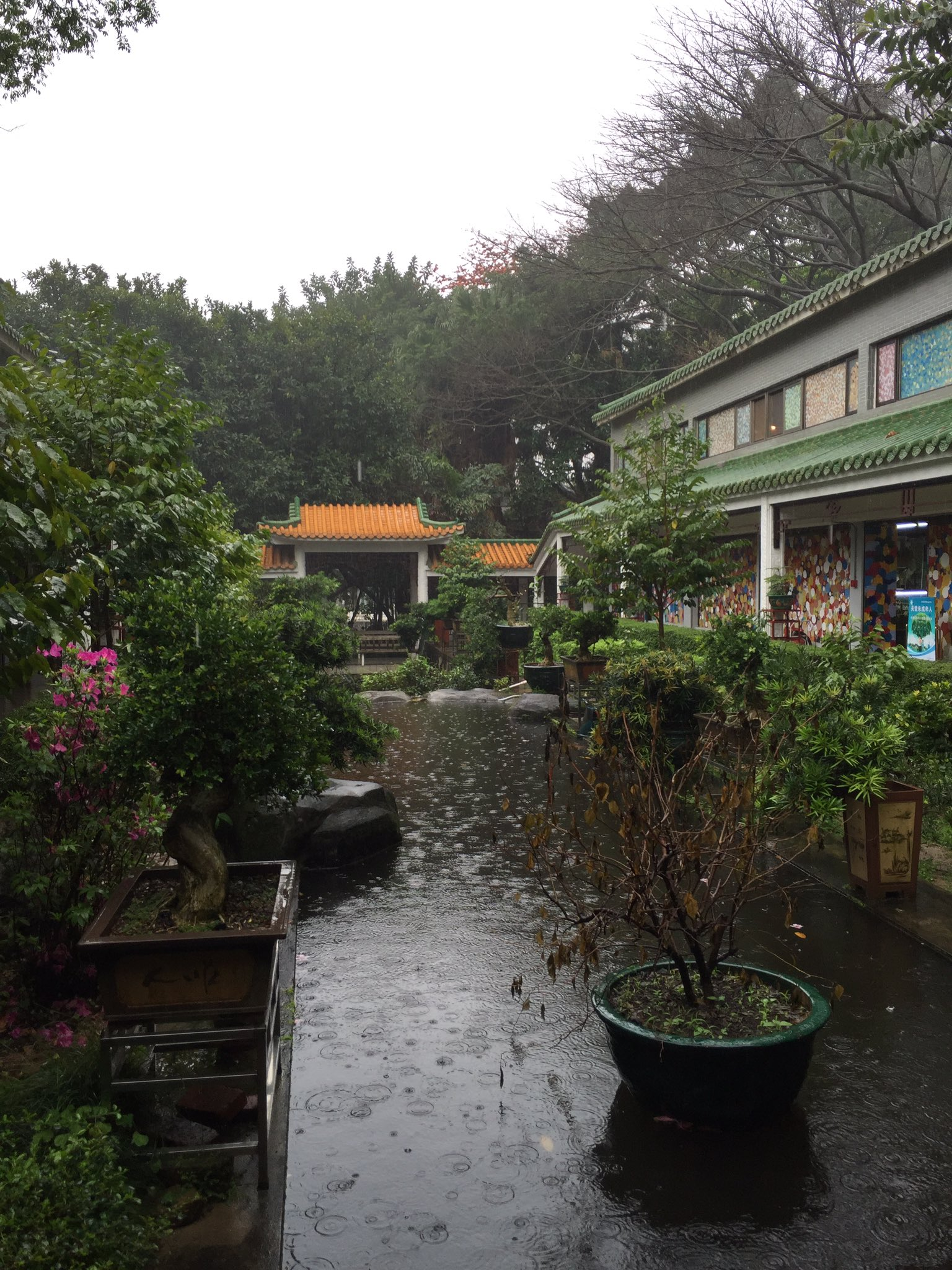 Enjoying the wonders of the Zhuhai Museum on a very rainy Sunday. https://t.co/XJP9CD4M6T