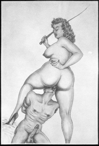 Tranny dominatrix galleries