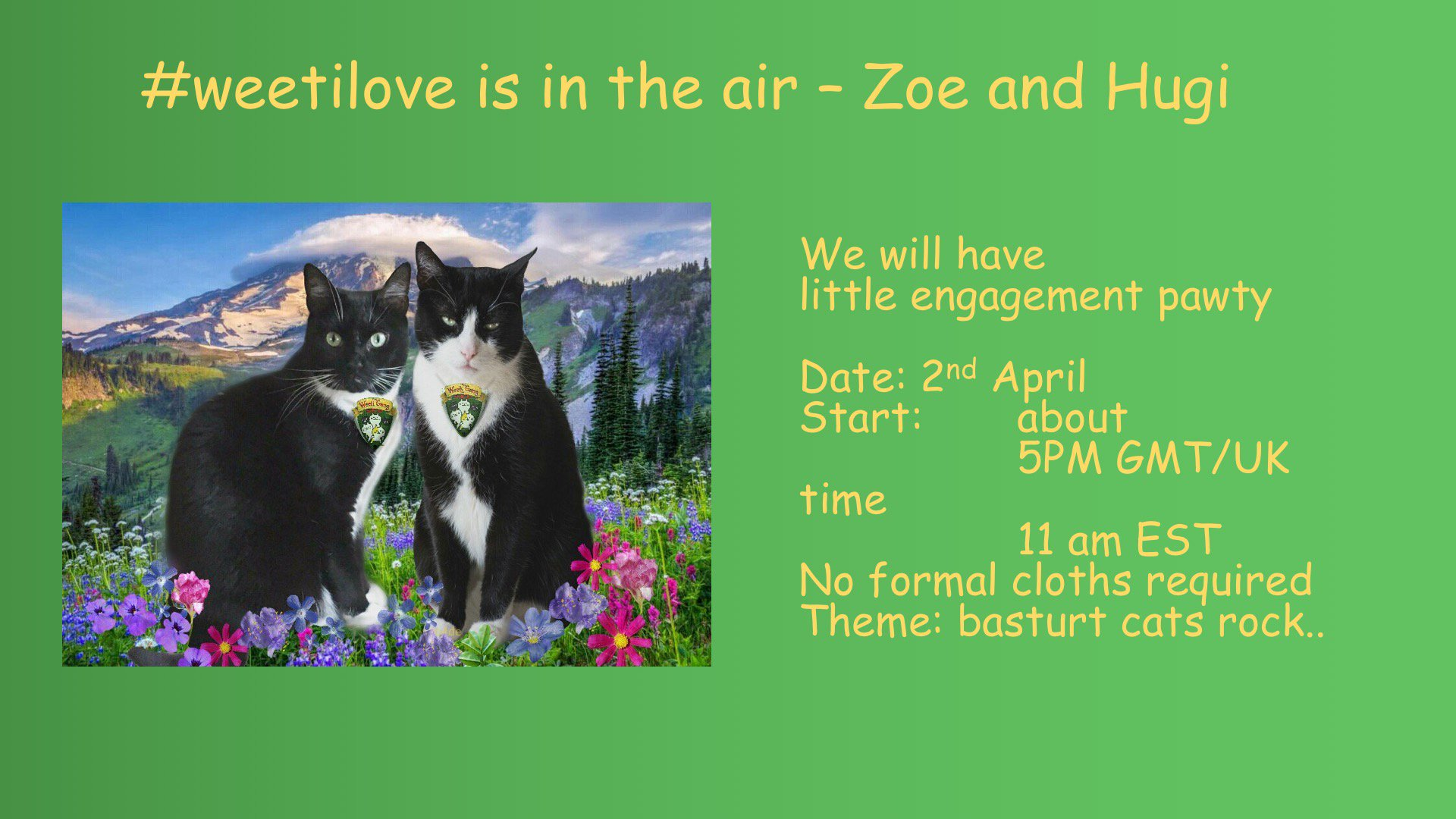 Thumbnail for #weetilove pawty
