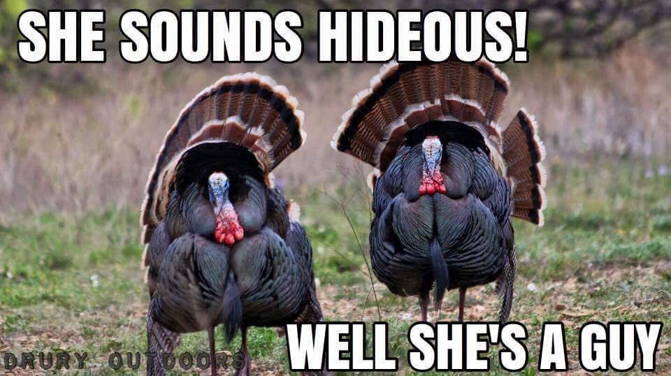 Veteranforcrypto Hive Witness On Twitter Haha The Turkeyhunter