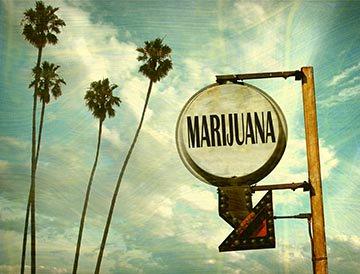 Guide to California's Marijuana Laws