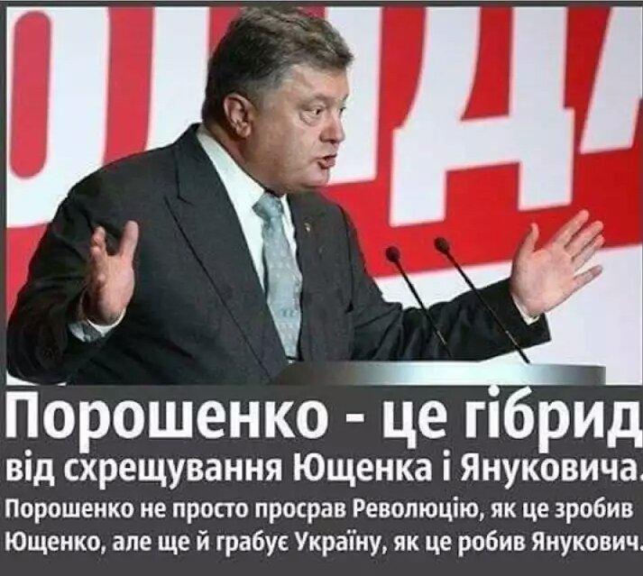 Расследованием убийства Вороненкова будет заниматься прокуратура Киева - Цензор.НЕТ 5680