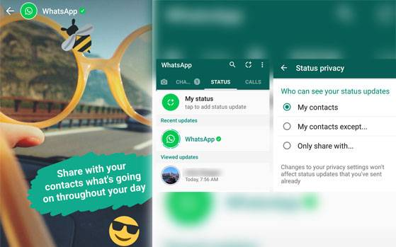 Whatsapp To Return Text Based Status Feature Scoopnest