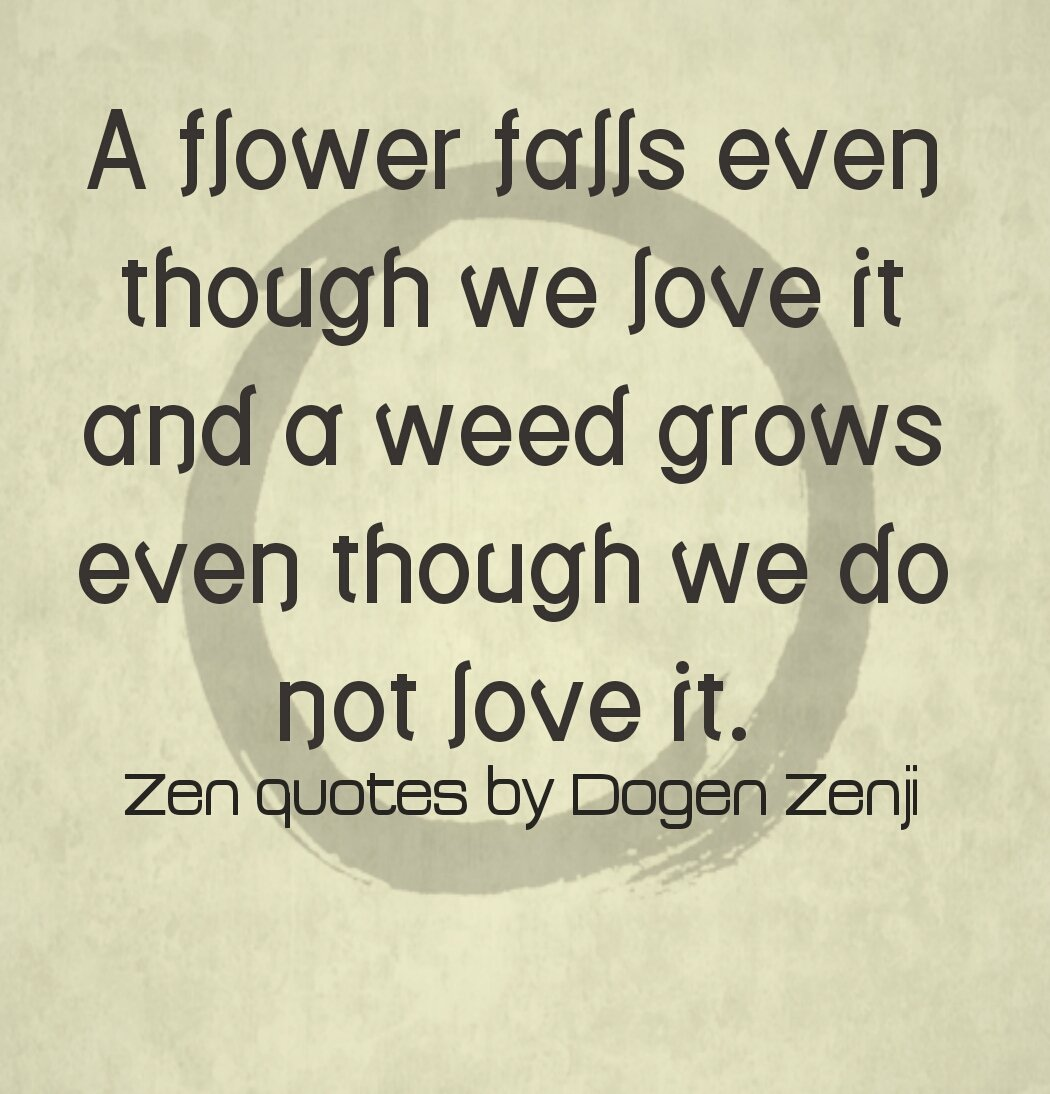 Jignesh Adhyaru On Twitter A Flower Falls Even Though We Love It