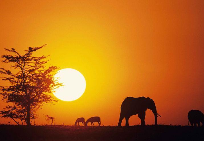 Organizzare un lungo viaggio in Africa: dove andare?