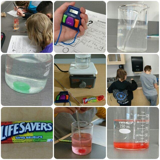 @West_Ridge_CBE Grade 5 studying dissolving rates in chemistry - using Lifesavers! Thanks @RaynaBergerman! #cbeliteracy #juniorscientists <br>http://pic.twitter.com/Kl0MeAwTkm