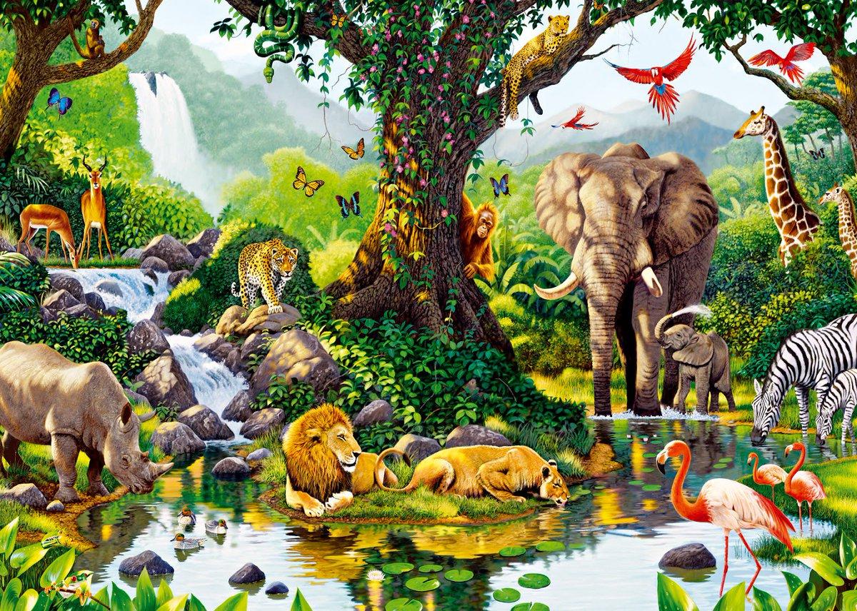 #firstdayofspring ! #EndangeredWildlife #WildlifeCrime #Poaching #ban...