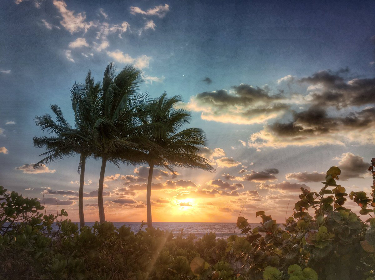Morning bright and breezin' https://t.co/DCFZ4KvQqg