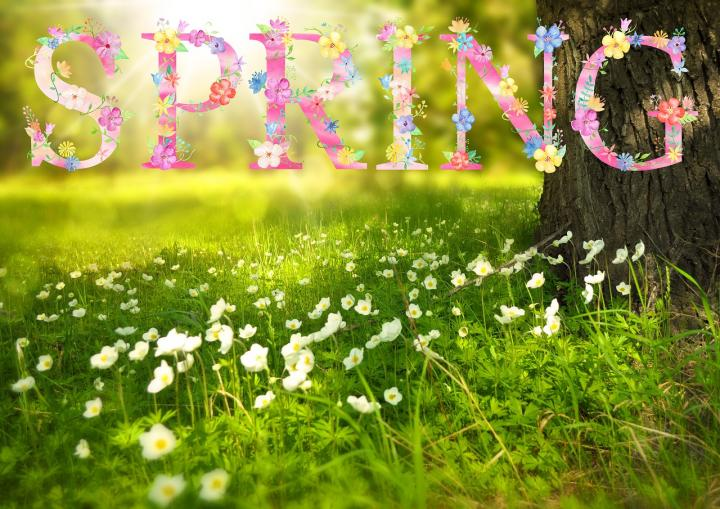 Happy #firstdayofspring