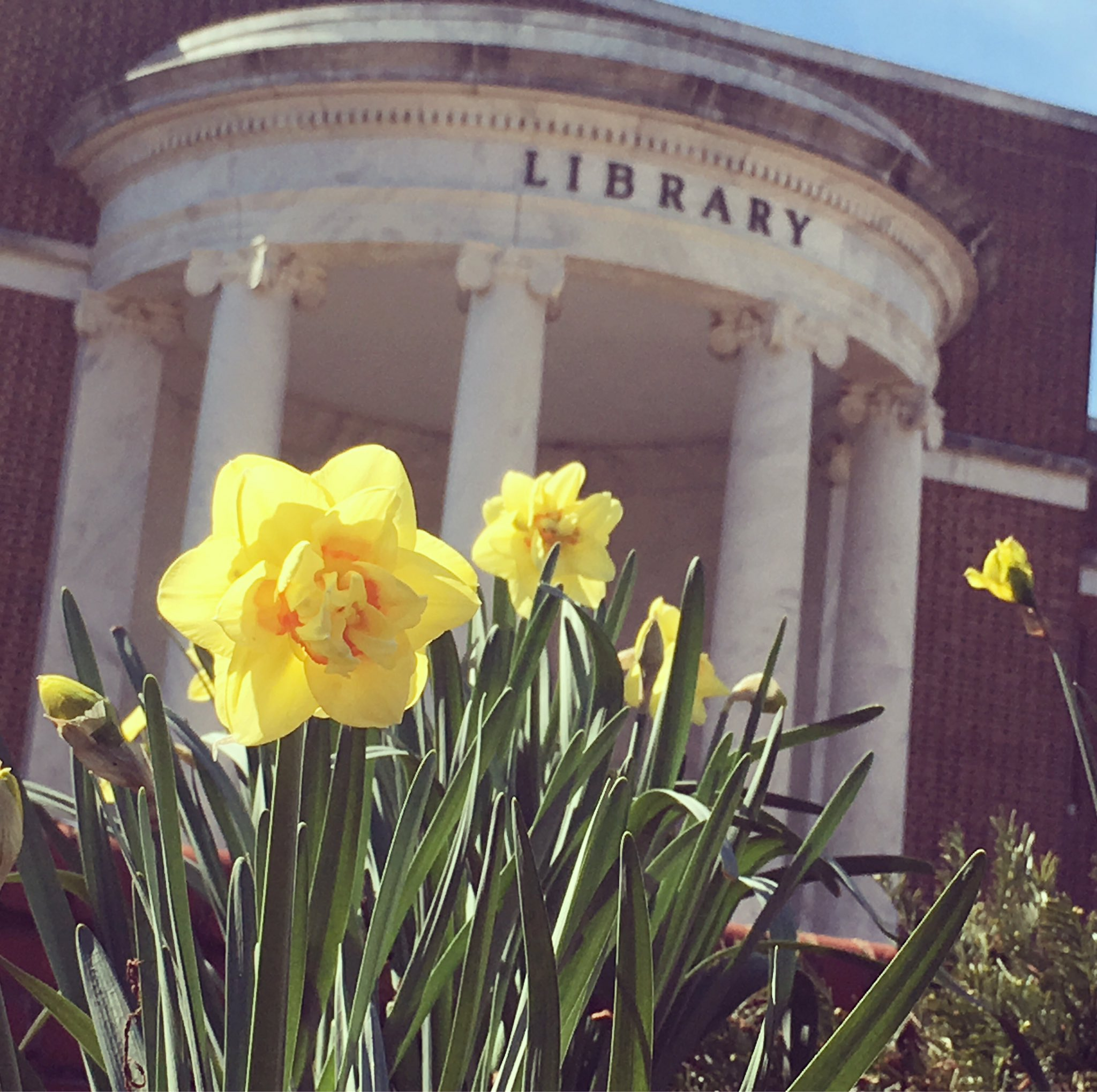 We're so delighted that spring is here. We look forward to seeing those pretty campus photos! 🌷#SpartanSpring #SeetheG https://t.co/CWTceznWLs