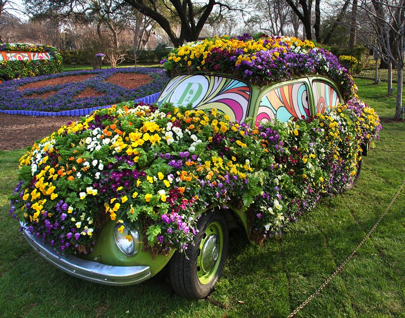 Happy #FirstDayofSpring from @dallasarboretum. Peace, Lover and Flower Power, y'all!