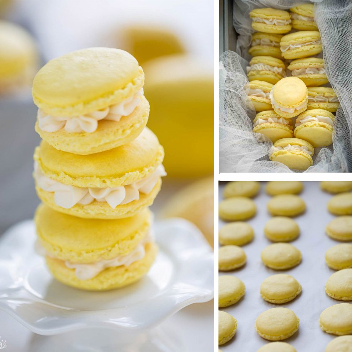 Lemon Macarons #MacaronDay #firstdayofspring https://t.co/Hy1QiNPcCg h...