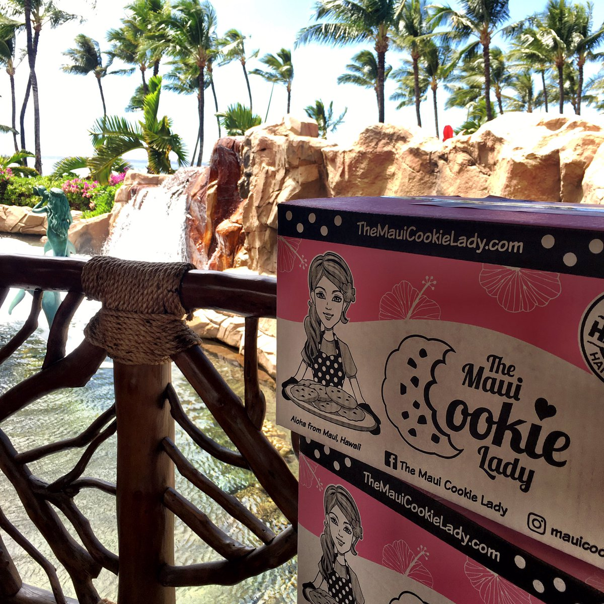 My front office view today at work @grandwailea #Maui #Hawaii #tropicalparadise #travel #startups #Foodiechats