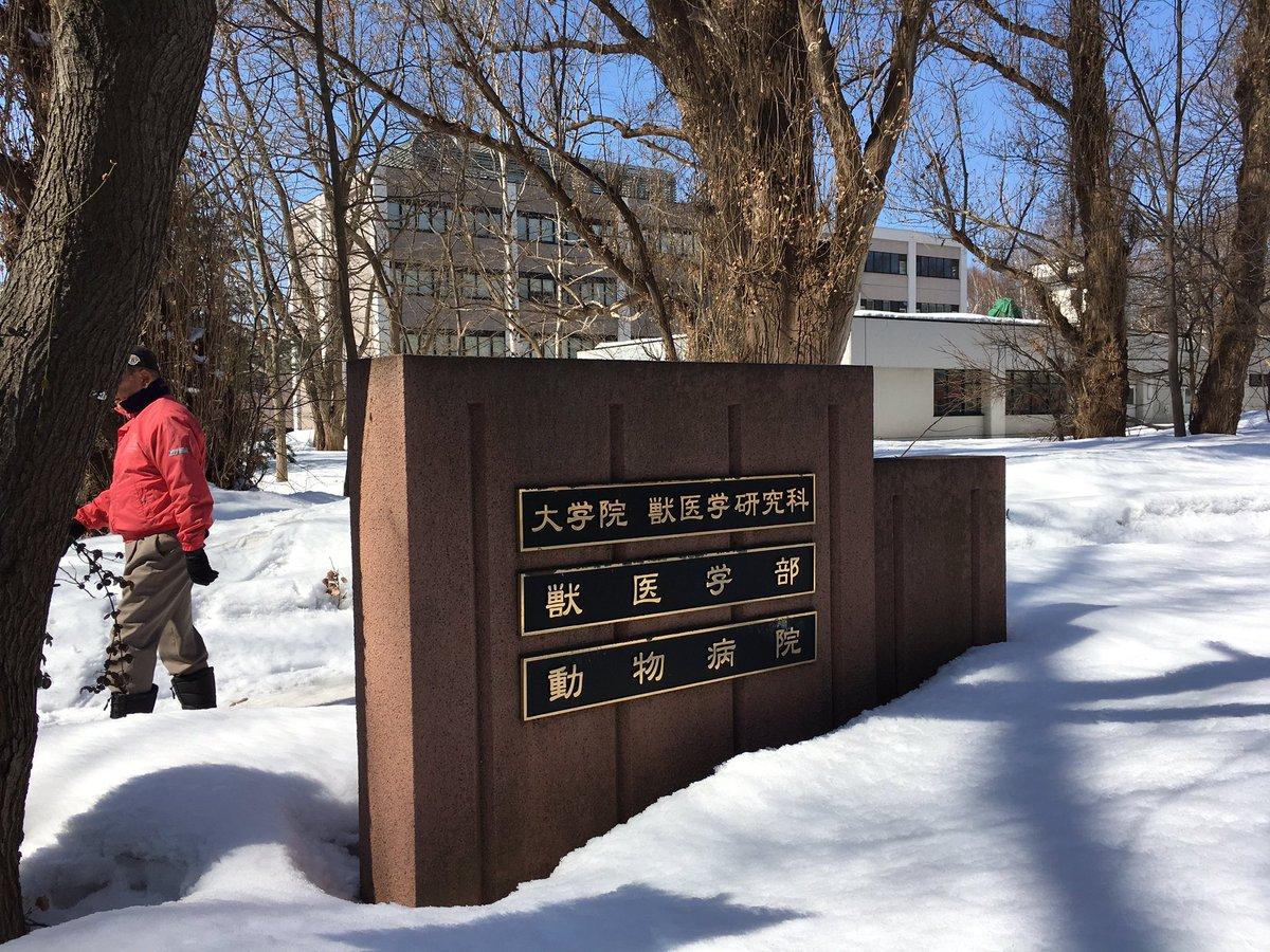 大学 後期 北海道