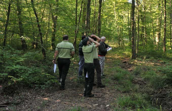 La #forêt, nature ou culture? La parole aux jeunes chercheurs @AgroParisTech #JIF2017 #IntlForestDay  http://www. forestopic.com/fr/foret/gesti on-des-forets/550-foret-nature-culture-parole-jeunes-chercheurs &nbsp; … <br>http://pic.twitter.com/jqd7CfgWT7