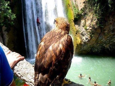 Kefrida waterfall #Bejaia <br>http://pic.twitter.com/XGgs8GXZUJ