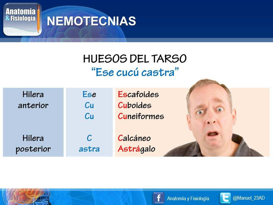 Chuletas Médicas on Twitter: \