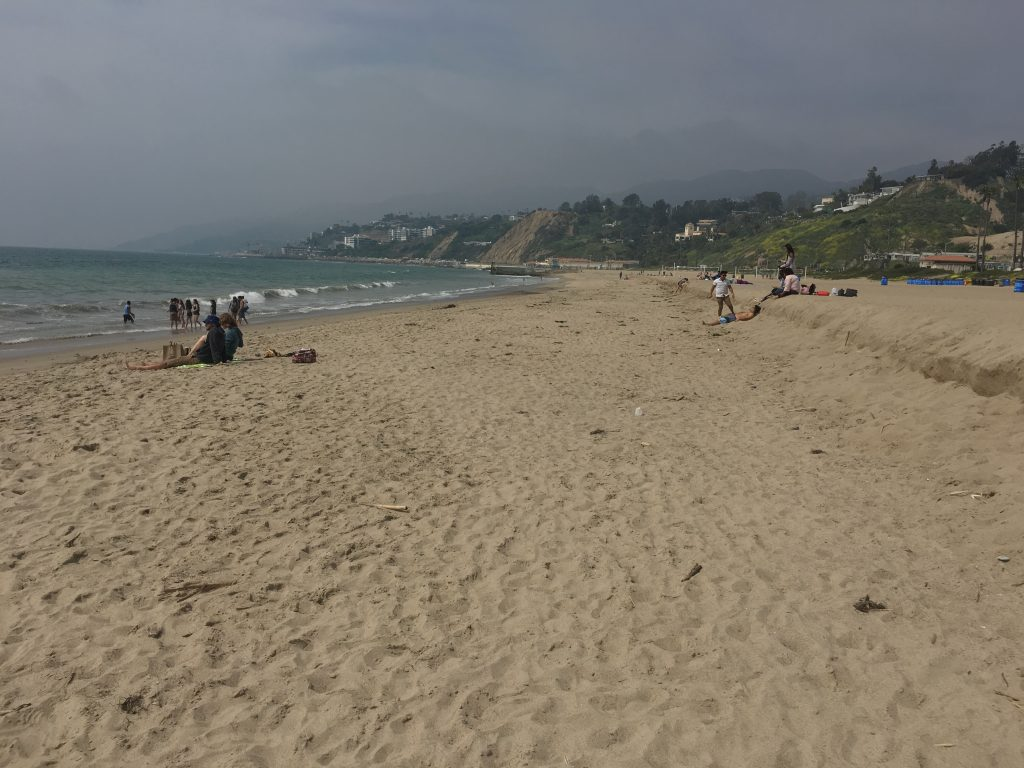 """Heal the Bay على تويتر: """"Thanks, @PeppGraphic! This Will Rogers State Beach  cleanup had 1,100 volunteers pick up 400+ pounds of trash  👀https://t.co/d6l77dh5K1"""""""