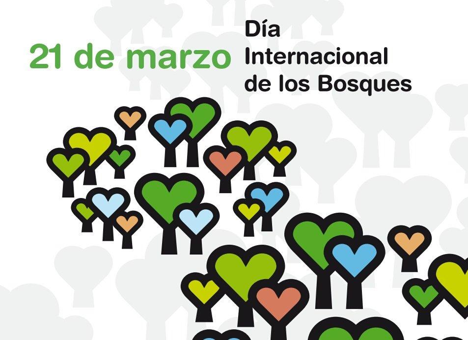 En el #DíaInternacionalDeLosBosques #PonteaPrueba! ¿Cuánto sabes acerca de los bosques y la energía?  http:// bit.ly/2nccc4k  &nbsp;    #IntlForestDay<br>http://pic.twitter.com/qEetZqUj0E