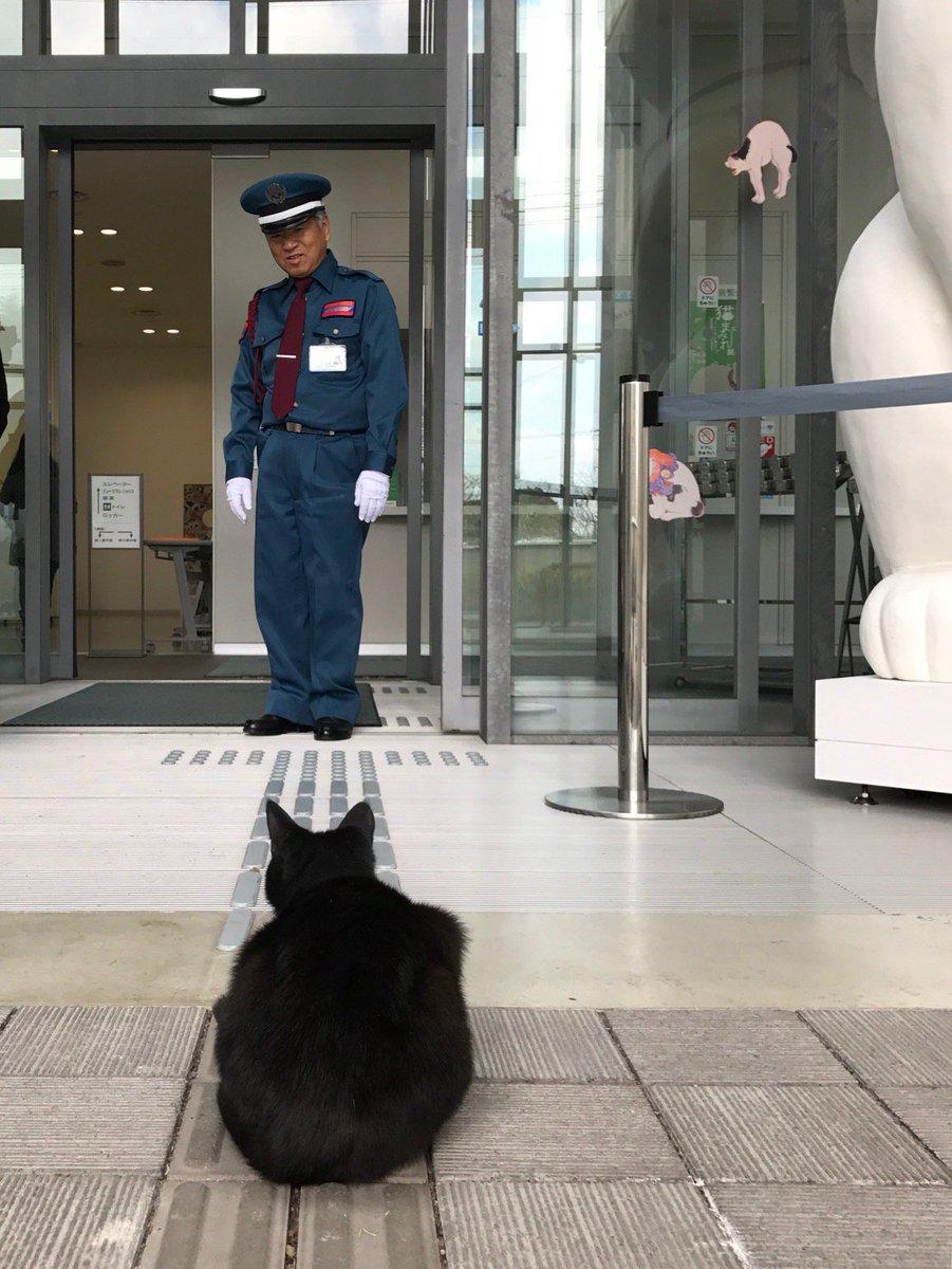 にらみ合いー突撃ー防御ー再突破ー捕獲ーお見送り。本日も近所の黒猫と警備の方の攻防がありました。特別展「招き猫亭コレクションー猫まみれ」なので入館を許可したいところですが、作品保全のため、丁重にお帰りいただきました。展覧会HPはコチラ: