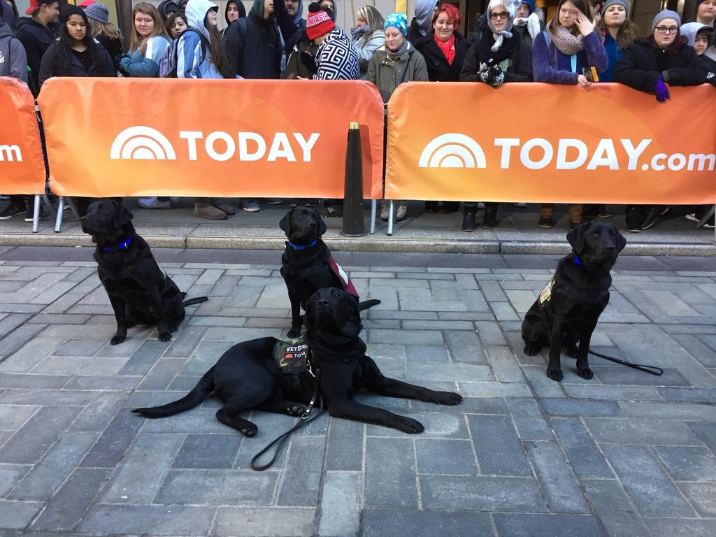 Love having my family visit this week! #TODAYPuppy