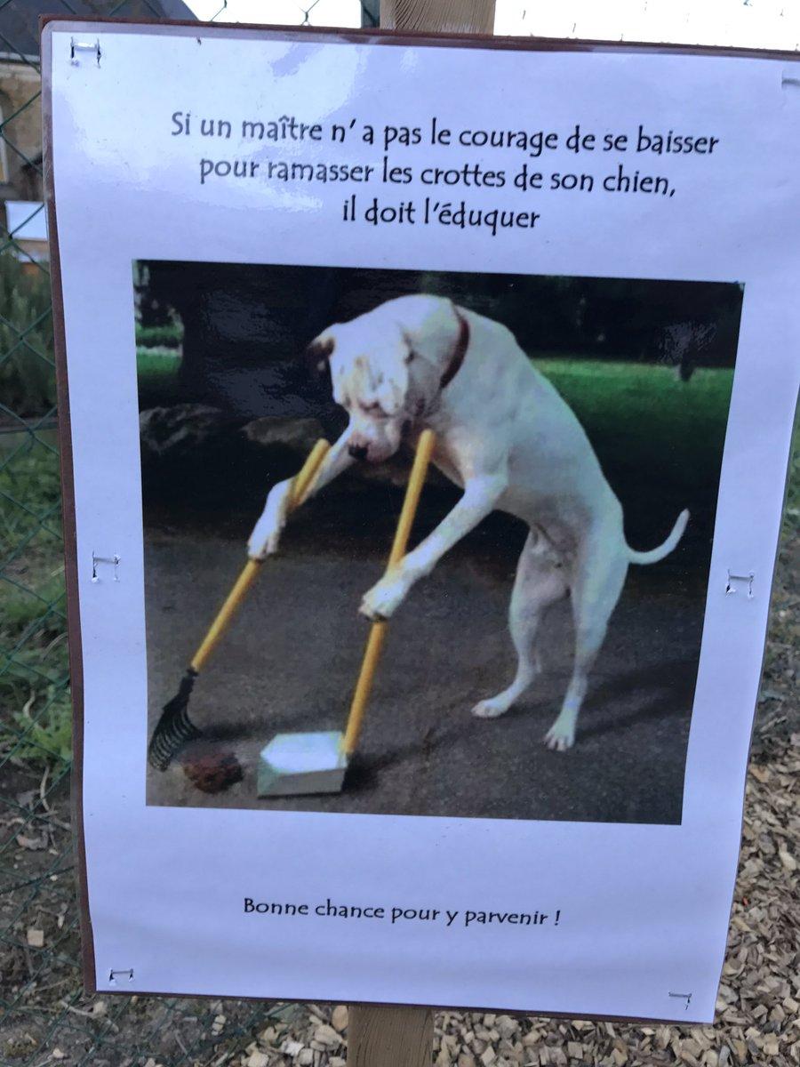 Bien ça!!!! Non mais!!! #dogs <br>http://pic.twitter.com/IfqiNvINWF