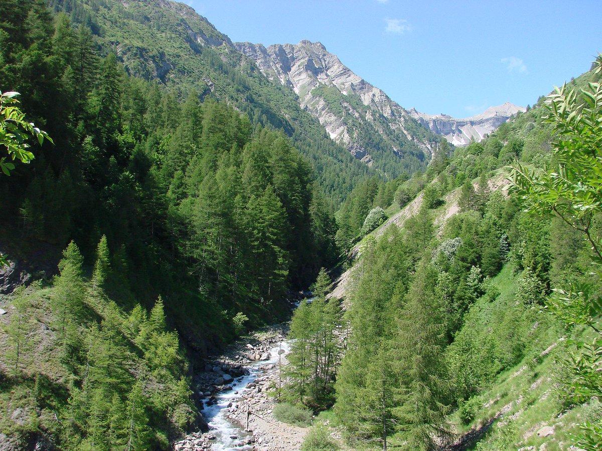 [Journée mondiale de l&#39;#eau] Découvrez le rôle majeur de la #forêt qui contribue à sa qualité ! #WorldWaterDay   http://www. onf.fr/redirect?oid=5 9b9 &nbsp; … <br>http://pic.twitter.com/GD5D9j7FNr