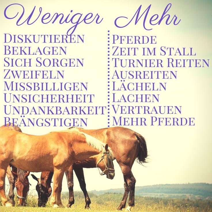 pferdesprüche hashtag on twitter