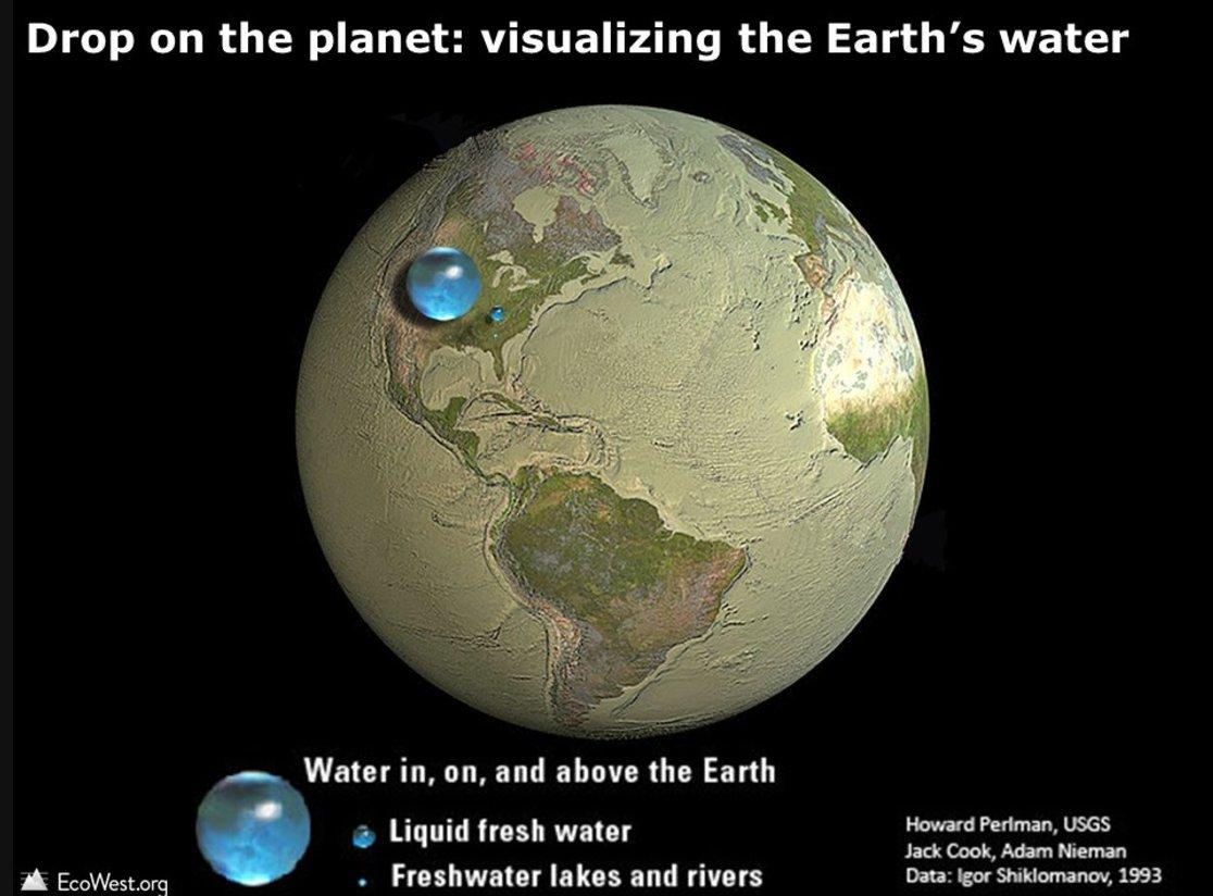 сколько процентов поверхности земли занята сушей