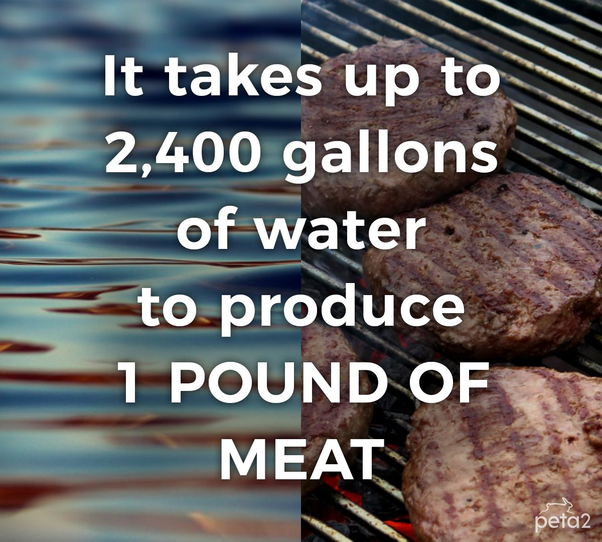 Save water 💦 Go vegan 🌿 #WorldWaterDay 🌍 https://t.co/jvGJDvcN27