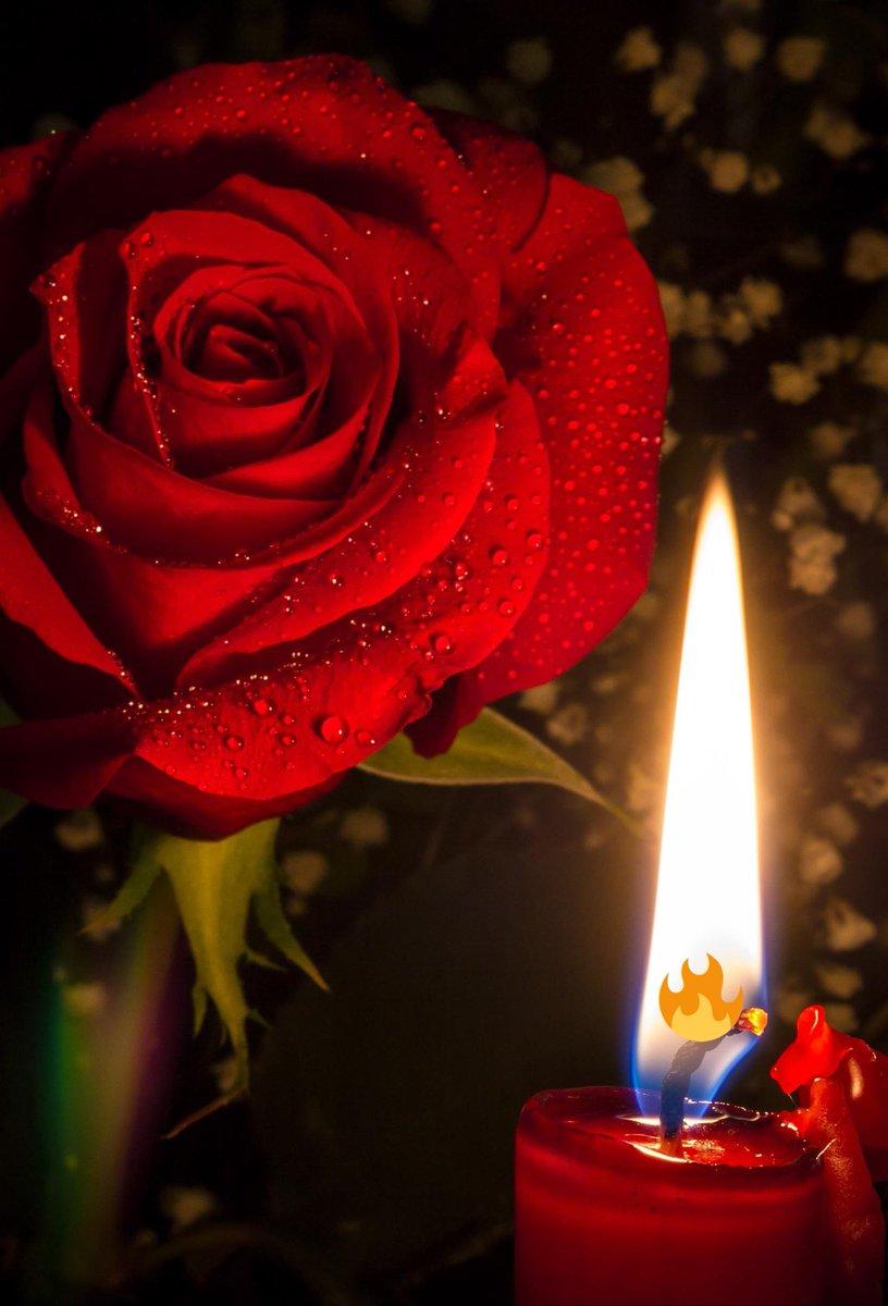 решил картинки с розами и свечами порно сценами секса