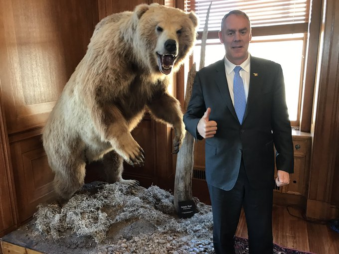 Secretary Ryan Zinke poses with a thumbs up next to a taxidermy grizzly bear