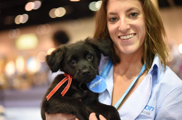 Wrap-Up of Global Pet Expo 2017 Day 1: Too. Much. Awesome! http://ow.ly/wgLq30aarq9