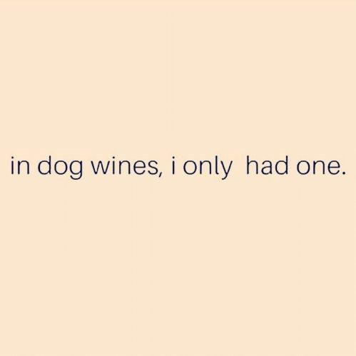 #winewednesday https://t.co/xCxtSflso2