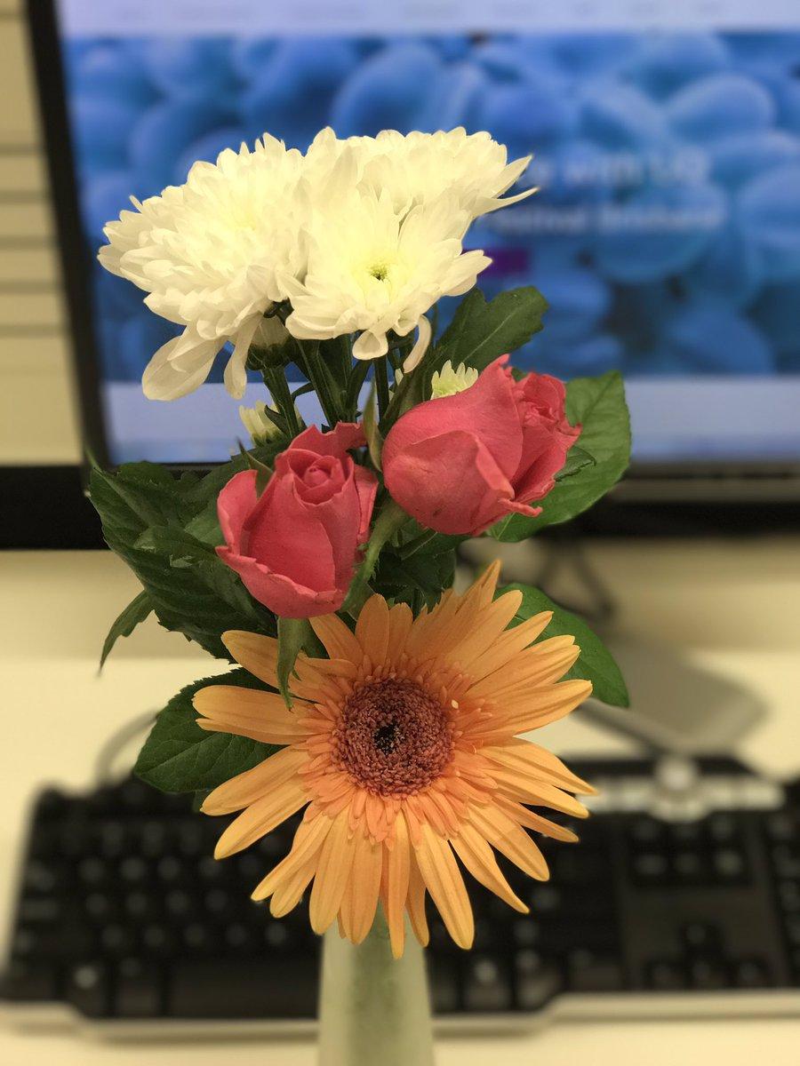 Chikoto On Twitter Chrysanthemums Funeral Flowers In Japan On