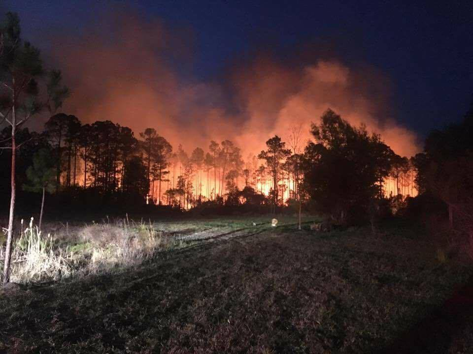 BREAKING UPDATE: Nassau wildfire is 50% contained, it has now burned 3...
